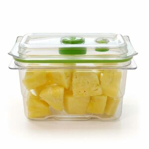 FOODSAVER FRESH CONTAINER (470ML)